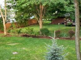 Backyard Ideas For Cheap Sloped Backyard Ideas On A Budget Budget Of Sloped Backyards