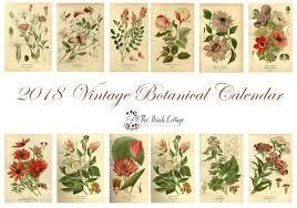 botanical calendars calendar 2018 vintage 2018 calendar printable