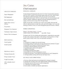 business development executive resume executive resume template business development executive resume