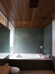 Ceiling Ideas For Bathroom Bathroom Ceiling Ideas Discoverskylark