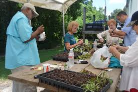 louisiana master gardener program continues to change and grow