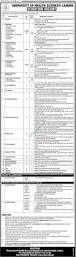 Database Engineer Jobs University Of Health Science Lahore 2017 Uhs Jobs Application Form