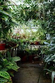 Leach Botanical Garden by Travel Notes Bristol Botanic Gardens U2013 Weald Store