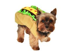 dress your pooch up for halloween for 20 or under myrecipes