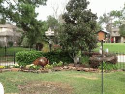 prime lawn landscaping blog kingwood u0026 the woodlands in texas