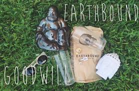 goodwill u0026 earthbound haul itsalyryan youtube