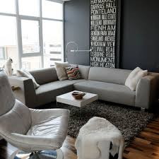 Gray Living Rooms Home Design Ideas - Living room design grey