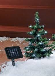 solar trees carolwrightgifts