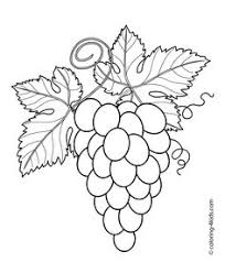 apple coloring pages kids fruits coloring pages printables