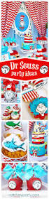Cat In The Hat Party Decorations 273 Best Dr Seuss Party Ideas Images On Pinterest Birthday