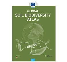 Atlas Help Global Soil Biodiversity Initiative A Scientific Effort