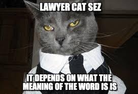 Meaning Of The Word Meme - lawyer cat sez lawyer cat meme on memegen