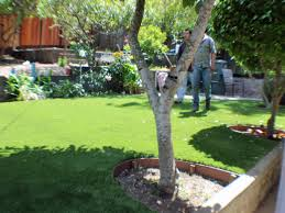 Florida Backyard Landscaping Ideas by Plastic Grass Meadow Woods Florida Lawn And Landscape Backyard Ideas