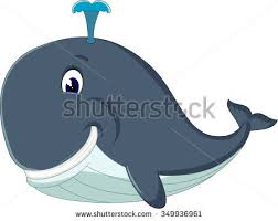 cartoon whale stock images royalty free images u0026 vectors
