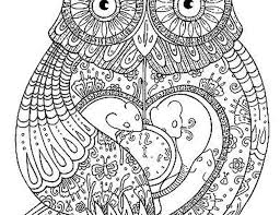 coloring pages owls adults bestofcoloring