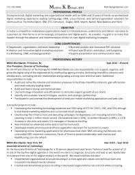 Marketing Resume Resume Digital Resume Example