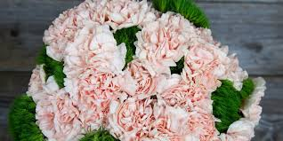 best place to order flowers online i found the best place to order flowers online for s day