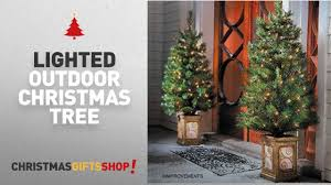 most popular lighted outdoor tree 4 ft pre lit entryway