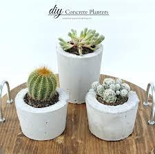Concrete Planters Concrete Planters Pictures Photos And Images For Facebook