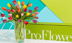mothers day flowers s day flowers proflowers groupon