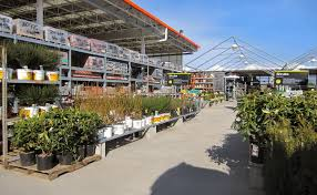 home depot opening time black friday home depot garden section zandalus net