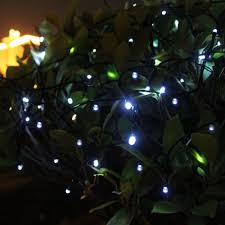 decorations outdoor patio string lights led in plant garden idea