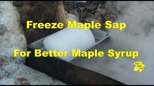 freeze maple sap for better maple syrup youtube