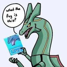 Fug Meme - what the fug is this fug know your meme