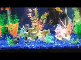 happy fish at play freshwater aquarium design ideas 10 gallon led