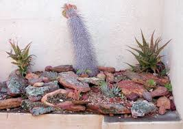 Indoor Rock Garden Ideas Rocks Gardening Ideas For Small Gardens 163 Hostelgarden Net