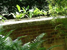 67 best brick wall images on pinterest landscaping fence and