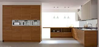 accessories captivating wooden cabinets glass doors for