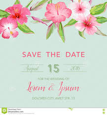 Background Of Invitation Card Wedding Invitation Card With Tropical Flowers Background Stock