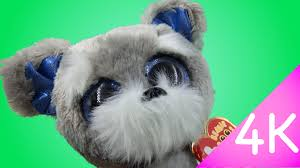 ty beanie boos whiskers 4k