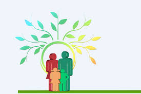 the 6 best family tree software programs for genealogy