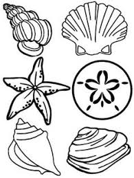 free printable sea life coloring pages printable pictures of sea shells printable seashell coloring