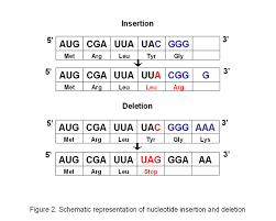 genetic engineering and mutations genetics background and
