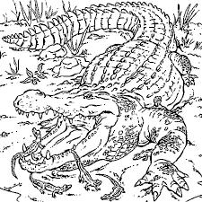 Coloriage Maman crocodile et ses petits en Ligne Gratuit à imprimer