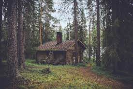 in the woods picalls cabin in the woods by olivier guillard