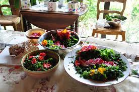 cuisine plantes sauvages autour des plantes sauvages comestibles site officiel de la