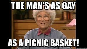 Gay Meme Generator - the man s as gay as a picnic basket sophia petrillo meme generator