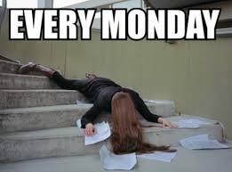 Mondays Meme - every monday funny ha ha ha pinterest mondays memes and