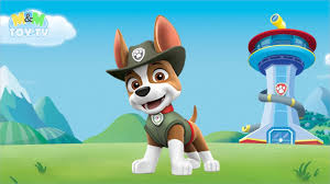tracker jeep coloring paw patrol tracker jeep driving pup with super