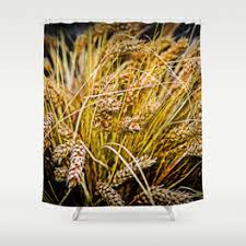 thanksgiving themed shower curtain curtain best ideas