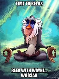 Relax Meme - time to relax been with wayne woosah rafiki meditating lion