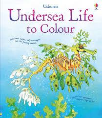 undersea colour u201d usborne books