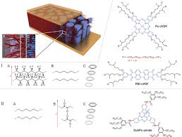 ferroelectric self assembled molecular materials showing both
