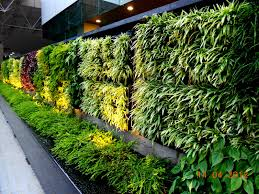 Garden Wall Systems by Agro Wall Vertical Garden Planting System