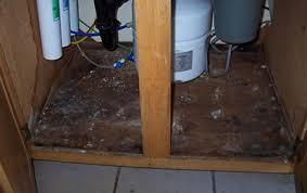 kitchen sink furniture black mold in kitchen top 5 causes of under sinks design sink 1