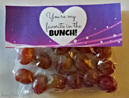 non candy valentine u0027s day gift bag ideas for kids gift